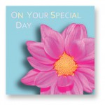 On Your Special Day: GRB010