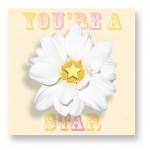 You're A Star: CDY006