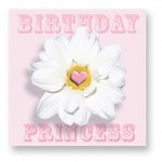 Birthday Princess: CDY007