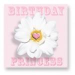 Birthday Princess: CDY007