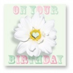 On Your Birthday: CDY011